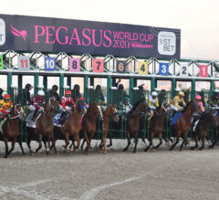 Potential Pegasus Fields Growing Clearer