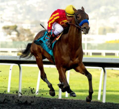 Azul Coast Grinds Home in El Camino Real Derby