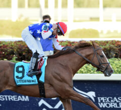 Mr Freeze Ices Foes in Gulfstream Park Mile