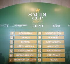 Saudi Cup 2020: Post Positions, Odds and Picks