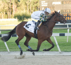 Tampa Bay Derby Preview: Sole Volante Tries for Two Straight