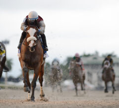 Holy Bull Winner Tiz the Law Leads 23 Individual Betting Interests for Pool 2 of Kentucky Derby Future Wager