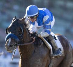Three Kentucky Derby 2020 Longshots That Could BLOW UP the Superfecta