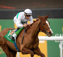 French Delight In Longines Turf Handicap