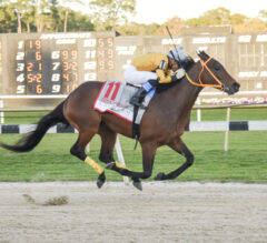 King Guillermo Bombs Tampa Bay Derby