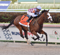 Tiz the Law Reigns Supreme in Florida Derby