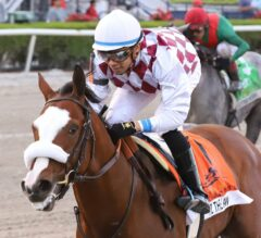 Belmont Stakes Preview: All Eyes on Tiz the Law