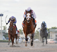Racing Dudes 2020 Belmont Stakes Wagering Guide and Picks Presale