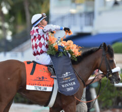 The 2020 Belmont Stakes: Like None Other