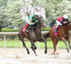 Racing Dudes Three Stars of the Week: Kimari Romps in the Mud