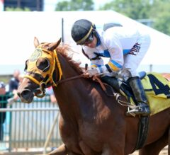 Fantasy Stakes Contender Spotlight: Lady Glamour