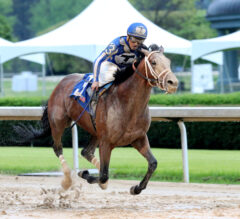 Mr. Big News All the Rage in Oaklawn Stakes