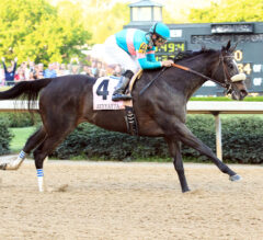 Somobombs: Oaklawn and Gulfstream Park Picks for April 18, 2020