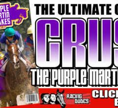 Racing Dudes 2020 Purple Martin Stakes Wagering Guide and Picks Released