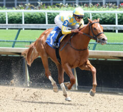 Eight Juvenile Fillies Make for Competitive G3 Schuylerville on Saratoga's Opening Day on Thursday