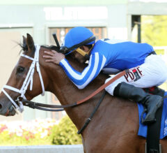 By My Standards Wears Down Warrior's Charge to Win Oaklawn Handicap
