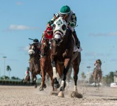 Gulfstream Park 5/10 Race 9 Preview: Improving Frosted Grace Returns
