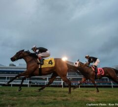 Gulfstream Park 5/8 Race 10 Preview: Turf-Sprinting Gals Come Out