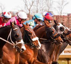 De Francis Dash Headlines Saturday's Four Laurel Park Stakes