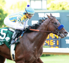 Racing Dudes Kentucky Derby Rankings 5/7/20: Nadal Takes Over Top Spot