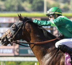 Racing Dudes Three Stars of the Week: Turfers Shine at Santa Anita Park