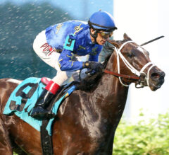 La Jolla Preview: Smooth Like Strait Could Prove Uncatchable