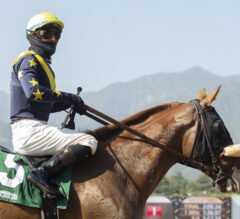 Del Mar Handicap Preview: United Ready to Fly Under the Friendly Southern California Skies