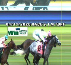 Tampa Bay Downs 5/6 Race 8 Preview: Overdrawn Maiden Field Hits the Turf