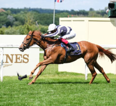 Alpine Star Crowned in Coronation