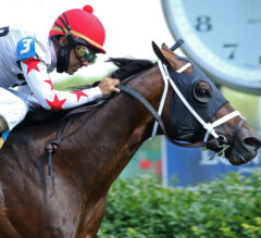 Factor This Remains Hot After Wise Dan Score