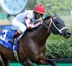 Fort Lauderdale Preview: It's Beginning to Look a Lot Like Gulfstream