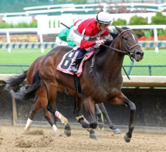 Dogwood Preview: Four Graces Tests Stakes Company