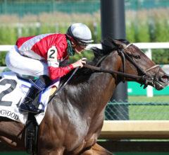Beaumont Preview: Streaking Four Graces Faces Latest Test