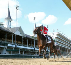 Four Graces Goes All the Way in Dogwood