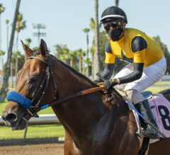 Galilean Stretches Out Strongly in Soi Phet
