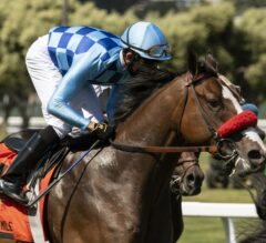 Neptune's Storm Back on Top in San Francisco Mile
