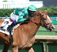 Royal Flag Goes Last To First In Shuvee