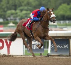 Blue Grass Preview: Better Late than Never for Keeneland's Premier Race