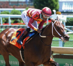 Adirondack Preview: Is Thoughtfully Asmussen's Next Star Juvenile?
