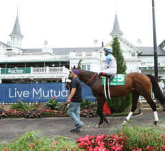 Tom's d'Etat Stamps Name on Breeders' Cup Classic Pre-Entries List