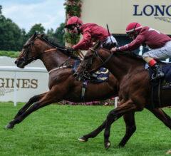 The Lir Jet Among Dozen Stakes Winners Comprising Franklin-Simpson Field