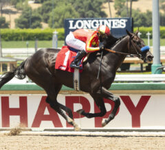 Kentucky Derby Contenders Pedigree Analysis: Uncle Chuck