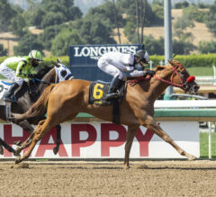 Warren's Showtime Stretches Out to Win Melair