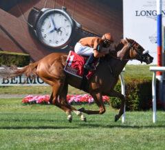 Bredenbury Wins Lady Shipman
