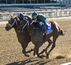 She's a Julie Noses Out Thrilling Victory in Ogden Phipps