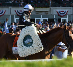 Flat Out Preview: Sir Winston Returns to Belmont Park