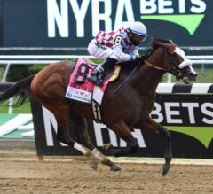Tiz the Law Dominates Belmont