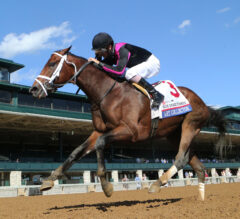 Racing Dudes Kentucky Derby Rankings 8/5/20: Final Major Preps Set for this Weekend
