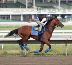 Authentic Draws Post 2 for Haskell, Named 4/5 Morning Line Favorite