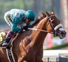 Desert Law Hoping To Do One Better In This Year's Bing Crosby